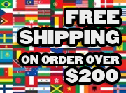 auto accessories free shipping
